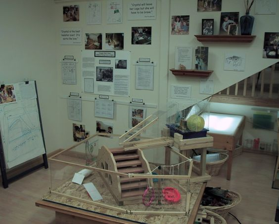 The Power of Documentation in a Reggio-Inspired Classroom